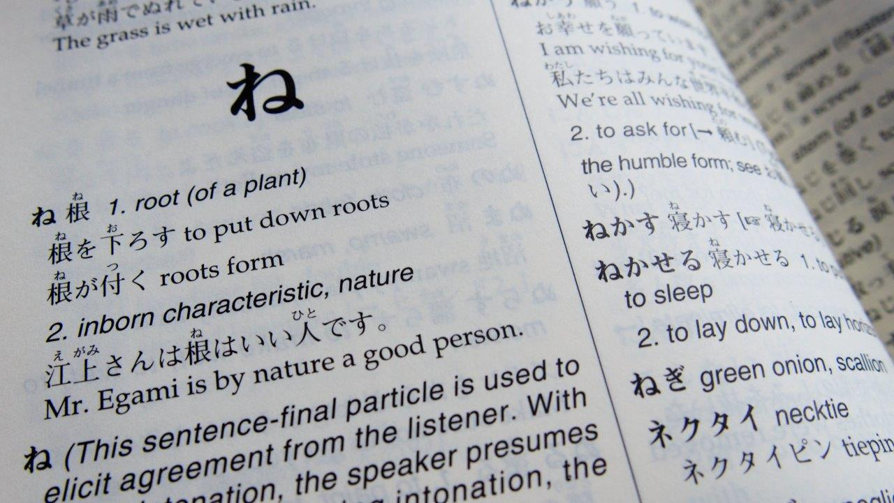 Japanse studieboeken: Woordenboeken