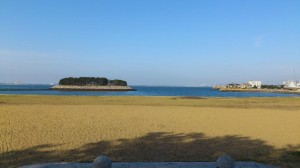 Seaside momochi