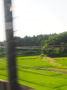On my way from Narita