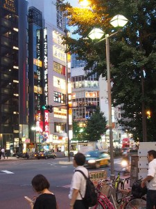 Shinkuku by night